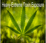Heavy – Extreme Toxin Exposure Detox Program Reviews