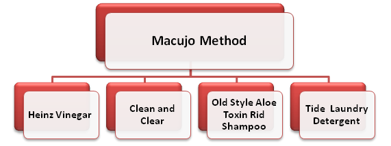 Macujo Method Components