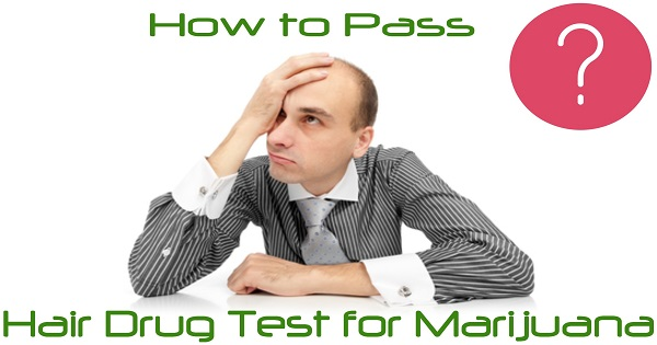 How to Pass a Hair Drug Test for Marijuana
