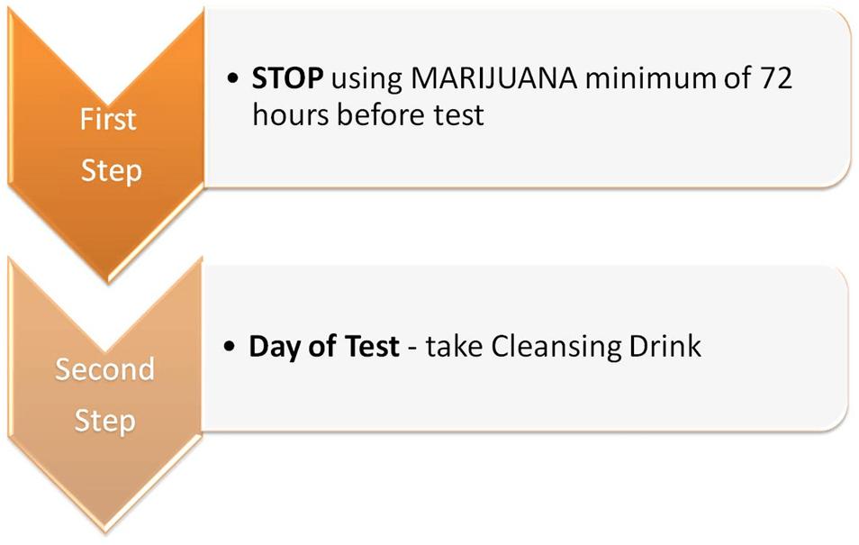 Test Pure Platinum Magnum Force Review Detox Marijuana Fast