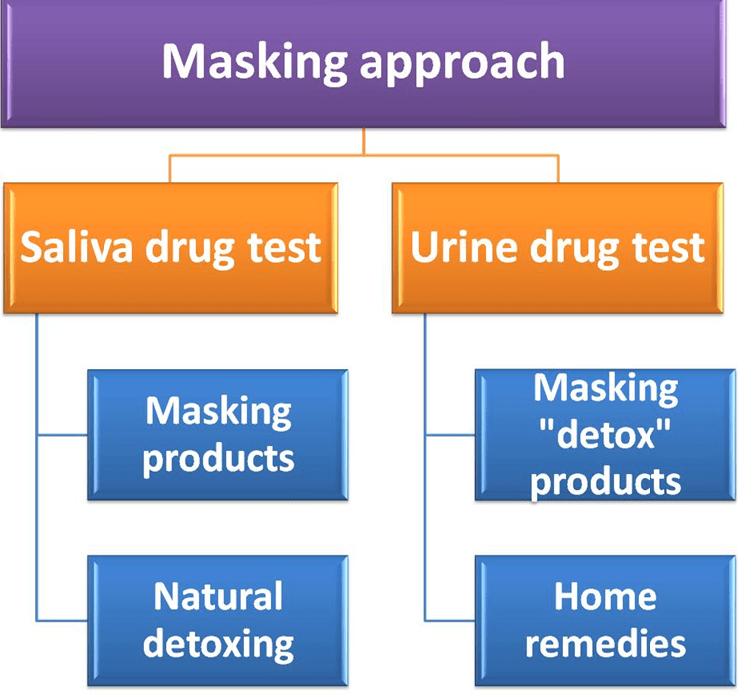 Masking Approach Diagram