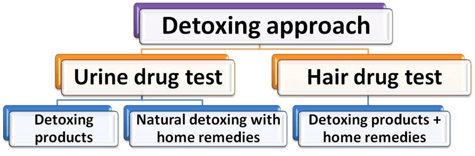 Detoxing Approach for Marijuana Diagram