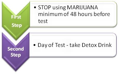Magnum Detox Instructions