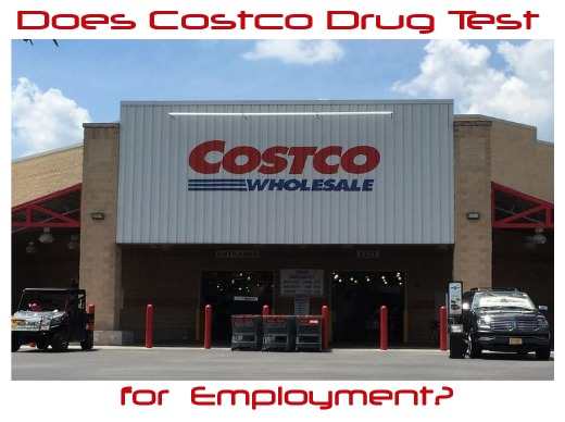 Does Costco Drug Test for Employment?