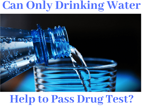 Can Only Drinking Water Help to Pass Drug Test?