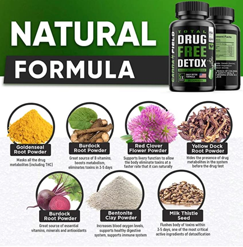 Cannafield Detox and Liver Cleanse Ingredients
