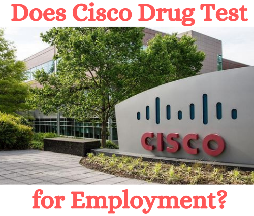 Does Cisco Systems Drug Test for Employment?
